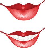Lips — Stock Vector