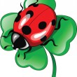 Ladybug on clower — Vettoriali Stock