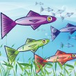 Shoal of Fish — Stock Photo