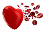 Flow of blood and heart — Stock Photo
