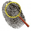 Fingerprint under a magnifier — Stock Vector