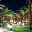 Night view of the garden of the hotel — Stock Photo #4275423