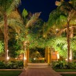 Night view of the garden of the hotel — Foto de Stock