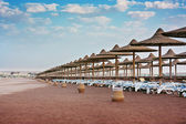Beach at the hotel in Egypt — Stock Photo