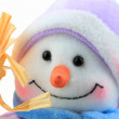 Snowman grin — Stock Photo