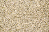 Brown stucco background. — Stock Photo