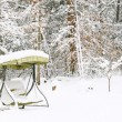 Stock Photo: Winter Snowscape