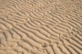 Sand ripples — Stock Photo