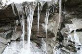 Frozen — Stock Photo
