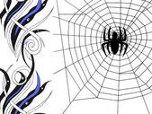 Spider on the web — Photo
