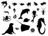 Sea world silhouette — Stock Photo