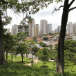View over Sao Paulo - Stock Photo