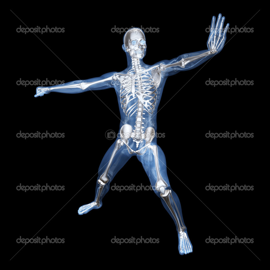 A medical visualisation of human anatomy. 3D rendered Illustration. — Stock Photo #5173813