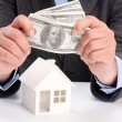 Stock Photo: House and money