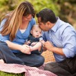 Happy Mixed Race Family Playing In The Park — Stock Photo #4116547