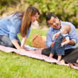 Happy Mixed Race Family Playing In The Park — Stock Photo