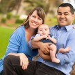 Happy Mixed Race Family Posing for A Portrait — Stock Photo #4116605