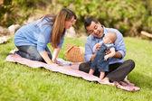 Parkta oynarken mutlu karışık ırk aile — Stok fotoğraf