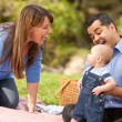 Playful Mixed Race Family In The Park — Stock Photo