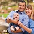 Stock Photo: Happy Mixed Race Family Posing for Portrait