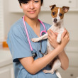 Smiling Attractive Mixed Race Veterinarian Doctor or Nurse with - 图库照片