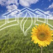 Sunflower, Green House Ghosted Over Fresh Grass and Sky — Foto Stock