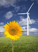 Wind Turbine Against Dramatic Sky with Bright Sunflower — Stock Photo