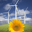 Wind Turbines Against Dramatic Sky with Bright Sunflower — Stock Photo