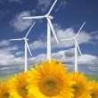 Wind Turbines Against Dramatic Sky with Bright Sunflowers — Stock Photo #5279255