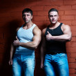Two muscular guys — Stock Photo #4180186