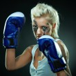 Royalty-Free Stock Photo: Beautiful agressive boxer girl