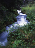 Flowing water of mountain stream — Stock fotografie