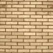 Texture of old bricks wall background — Stock Photo #4585368