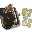Beautiful purse with euro coins — Stock Photo #4819900