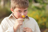 Young child smelling a flower — Stock Photo