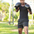 Boxer in the park — Stock Photo #4799469