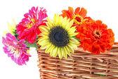 Basket Bouquet — Stock Photo