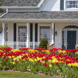 Tulip House — Stock Photo #4115603
