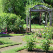 Stock Photo: Rose Arbor