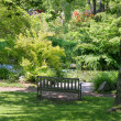Stock Photo: Peaceful Shady Garden