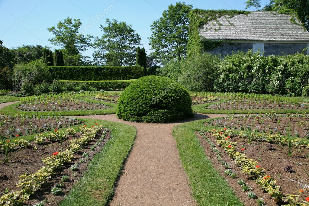 A formal garden with a clipped boxwood as its focal point. — Stock Photo #4689134
