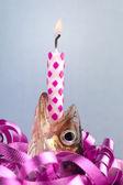 Birthday Fish — Stock Photo