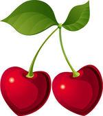 Mooie cherry — Stockvector