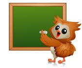 Owl Student — Stock Photo