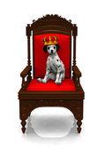 Dalmatian puppy prince — Stock Photo