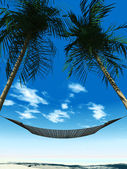 Hammock between palmtrees — Stock Photo