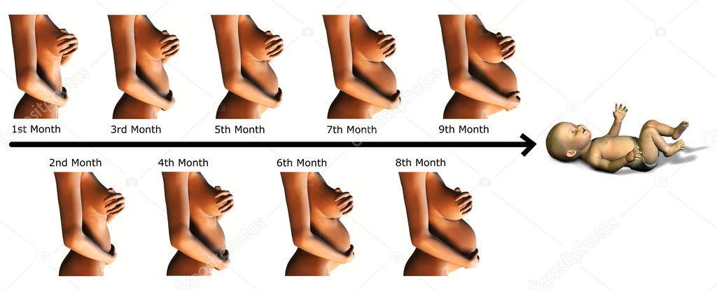 gewichtszunahme 4 monat schwangerschaft