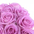 Bouquet of pink roses over white — Stok fotoğraf