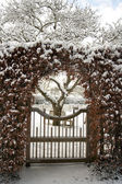 Garden gate and lawn covered in snow — Stock Photo