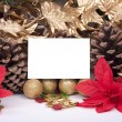 Stock Photo: Christmas decorations with blank card